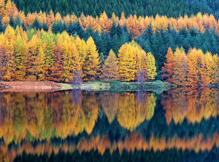 Best Landscape Photographers by ian seargent