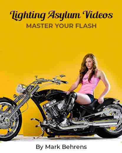 lighting asylum videos banner