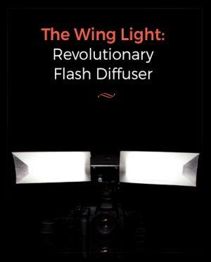 wing light