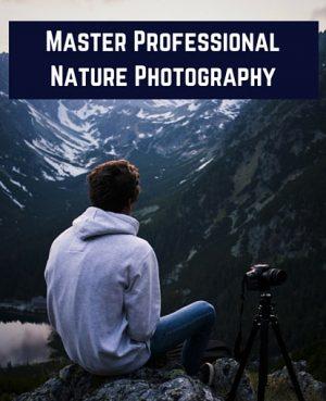 digital nature photography - 2