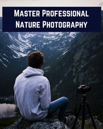 digital nature photography - 2
