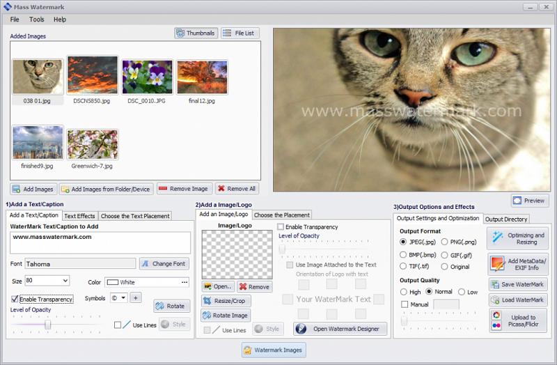 best watermark software