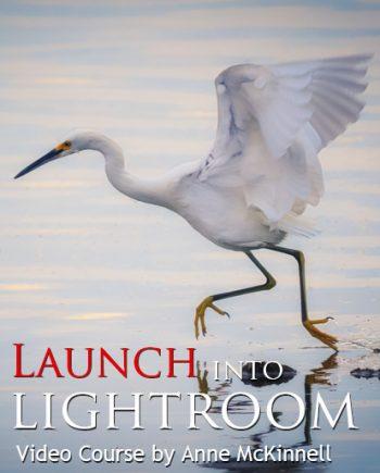 lightroom tutorial video