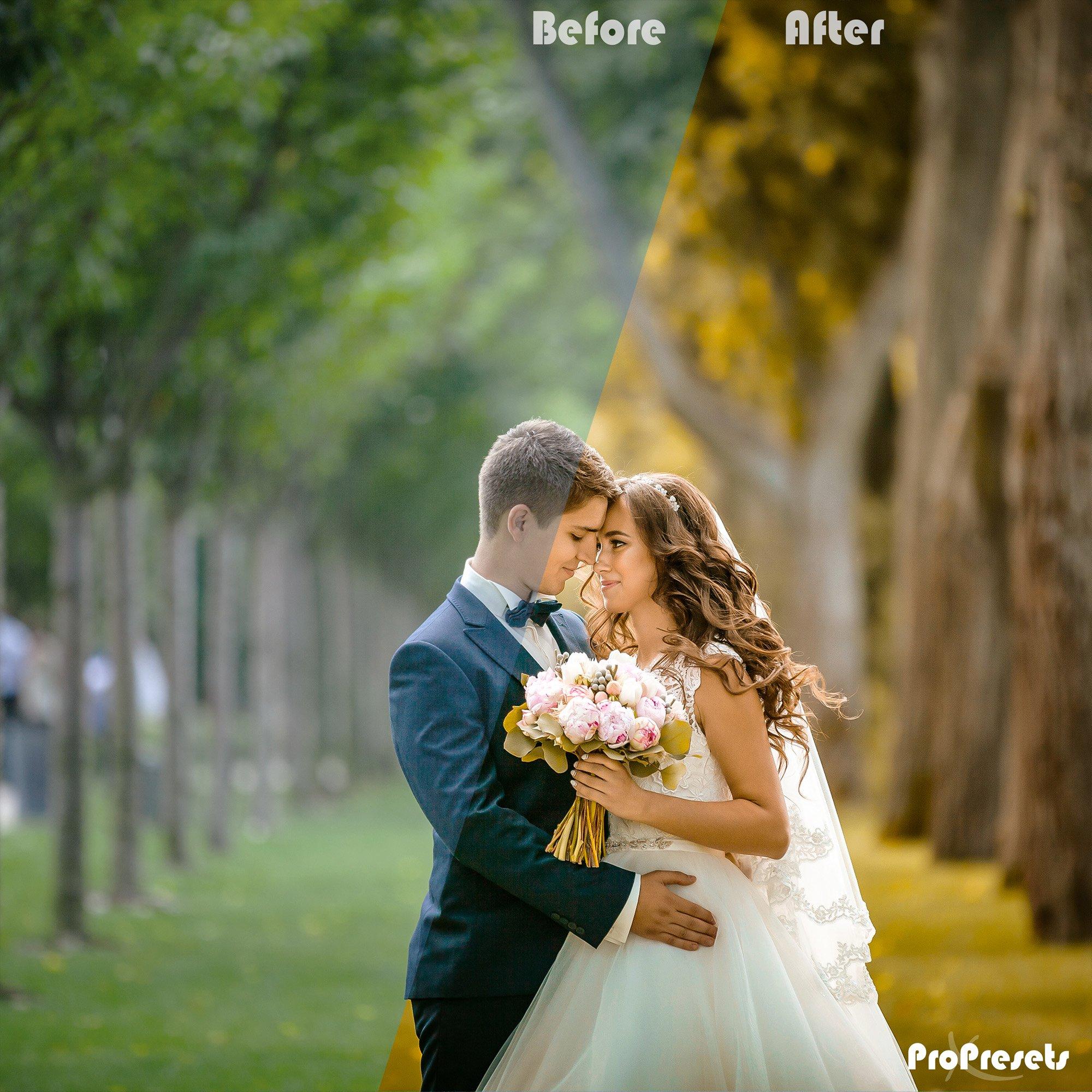 massive presets- WEDDING