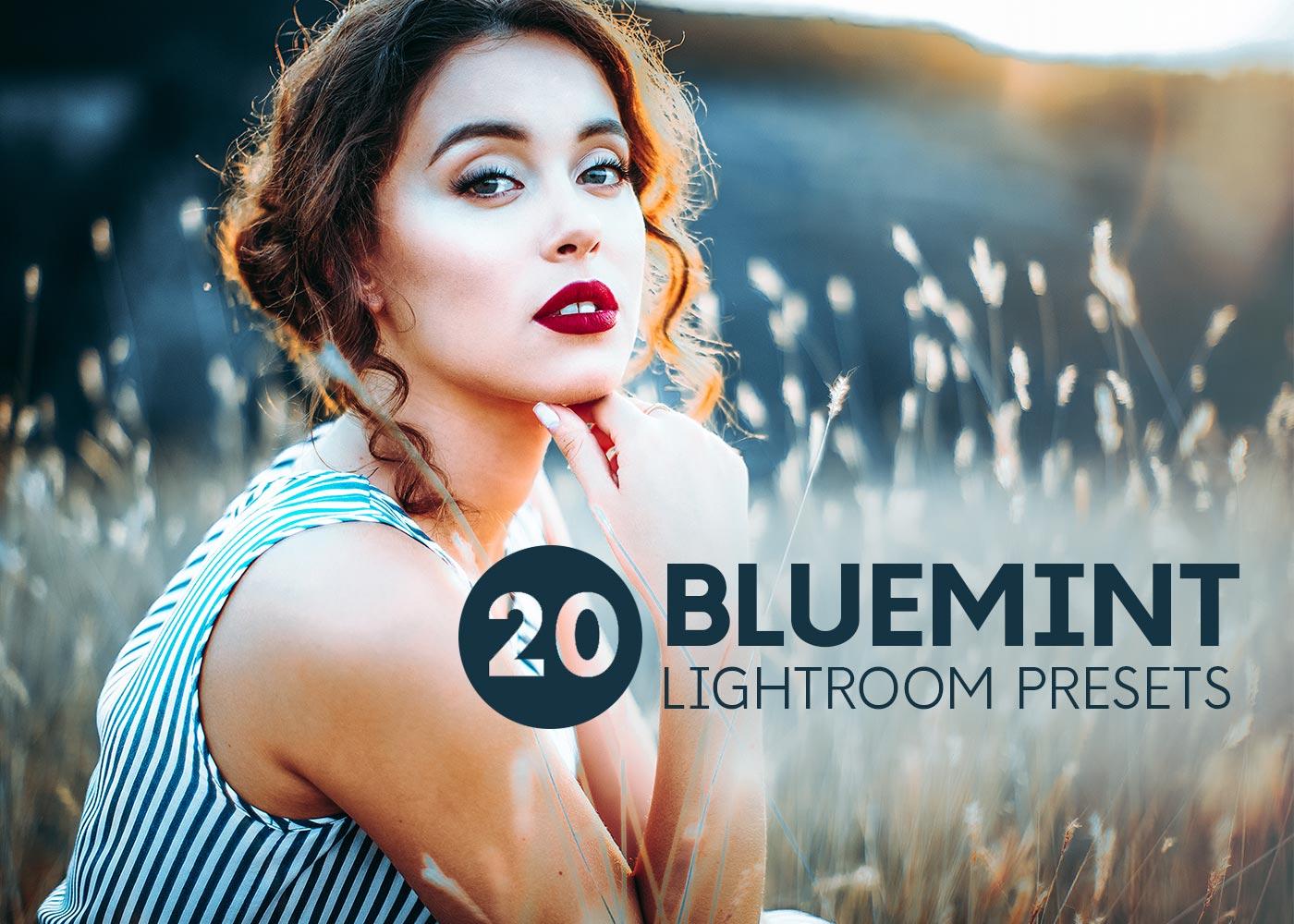 lightroom mobile presets feature bluemint
