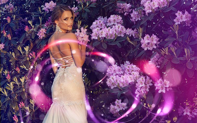 wedding overlays passion lights