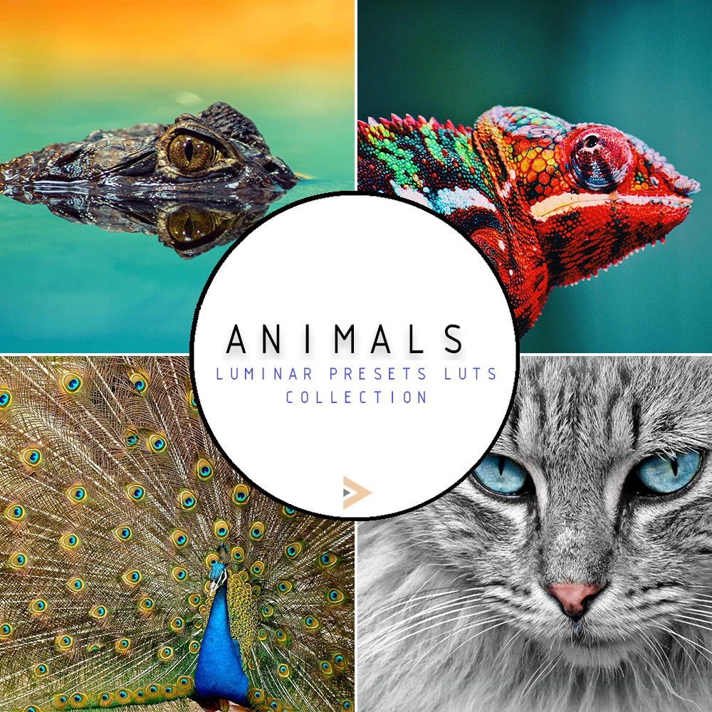 luminar presets animals category