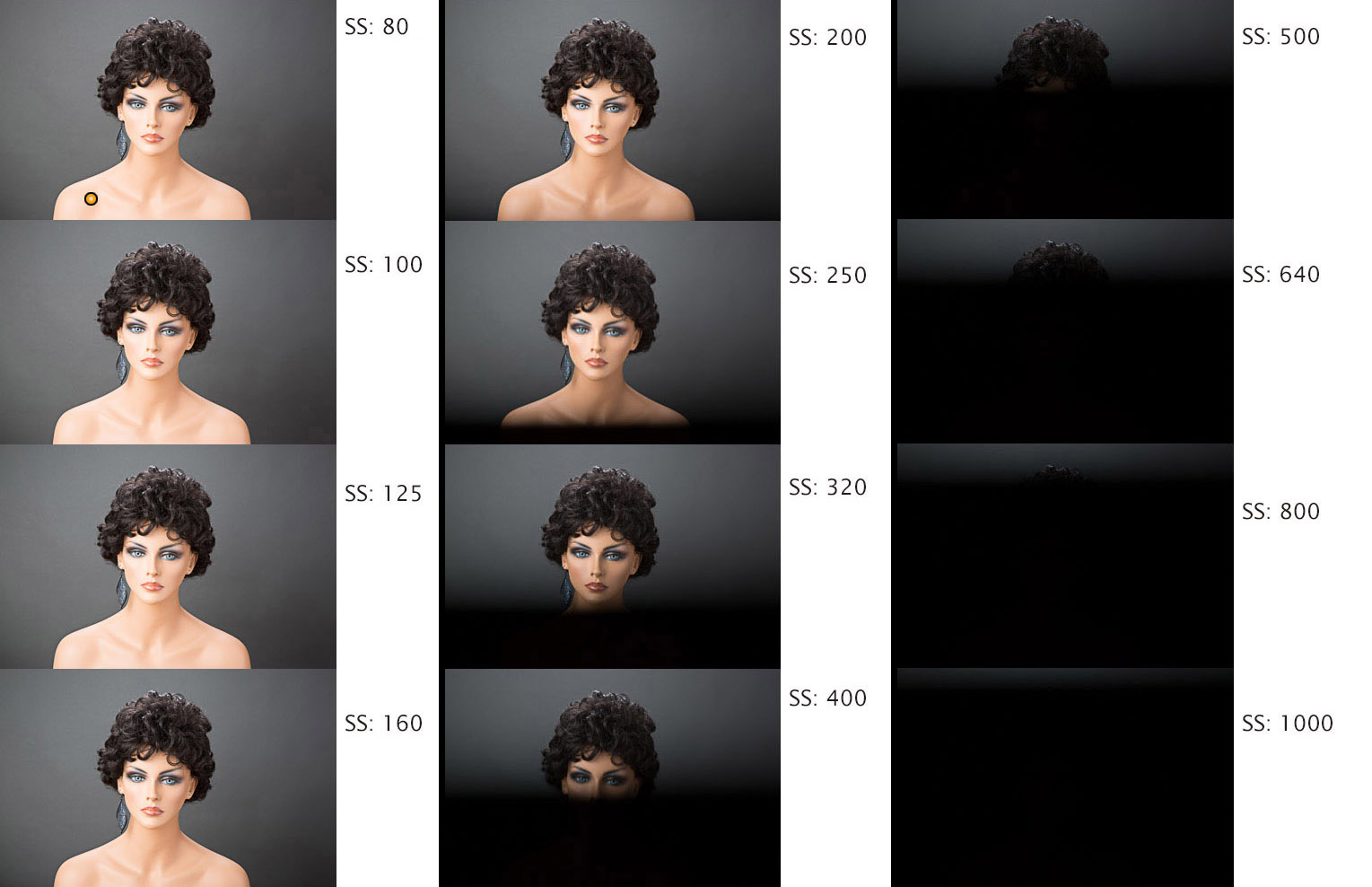 studio portraits orientation