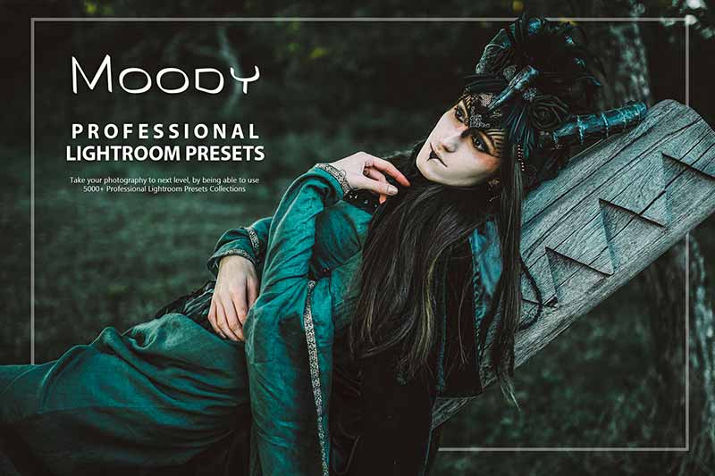 photo presets for moody