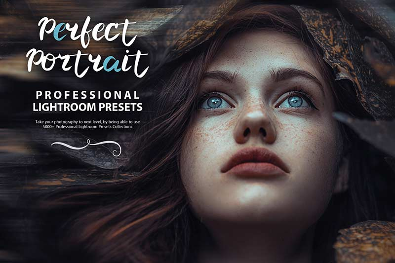 photo presets for perfect portraits