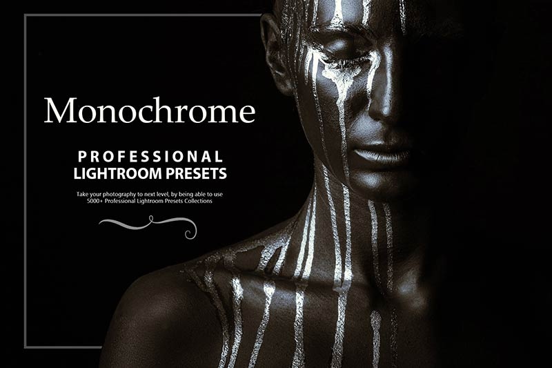 photo presets for monochrome