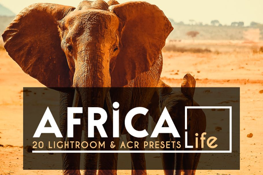 amazing lightroom presets africa
