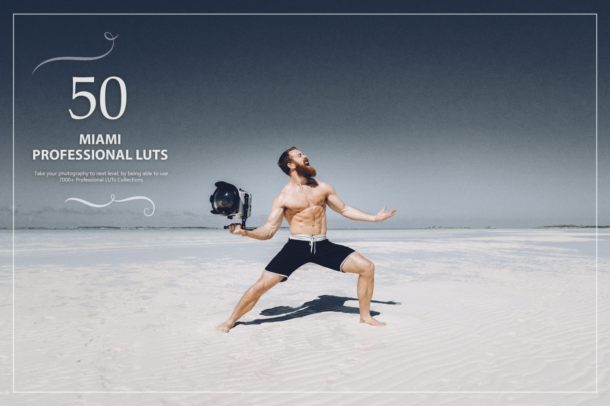 photoshop LUTs category