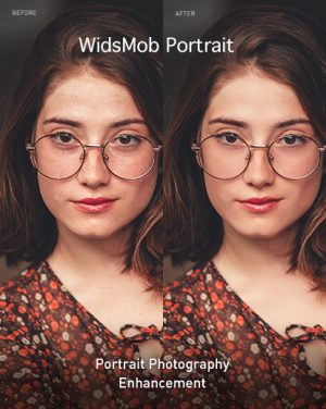 WidsMob Portrait Editor